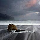 Jackson Bay, West Coast, NZ. by Michael Treloar