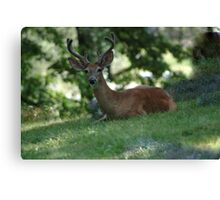 Must be the weekend Canvas Print