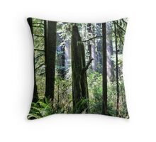 Late Morning Light Throw Pillow