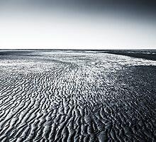 Wadden Sea by novopics