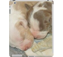 Two New Little Ones ~ iPad Case/Skin