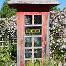 Phonebox with Jasmine.  Sugar? by Graham Mewburn