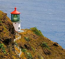 Makapu'u Lighthouse by Cheryl  Lunde