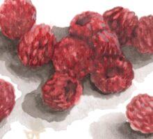 Ripe Red Radberries Sticker