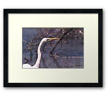 070406-11 Framed Print
