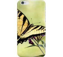 tiger swallowtail 1 2013 iPhone Case/Skin