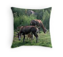 071806-8  LUNCH TIME AT THE CLEVELAND METROPARKS ZOO Throw Pillow