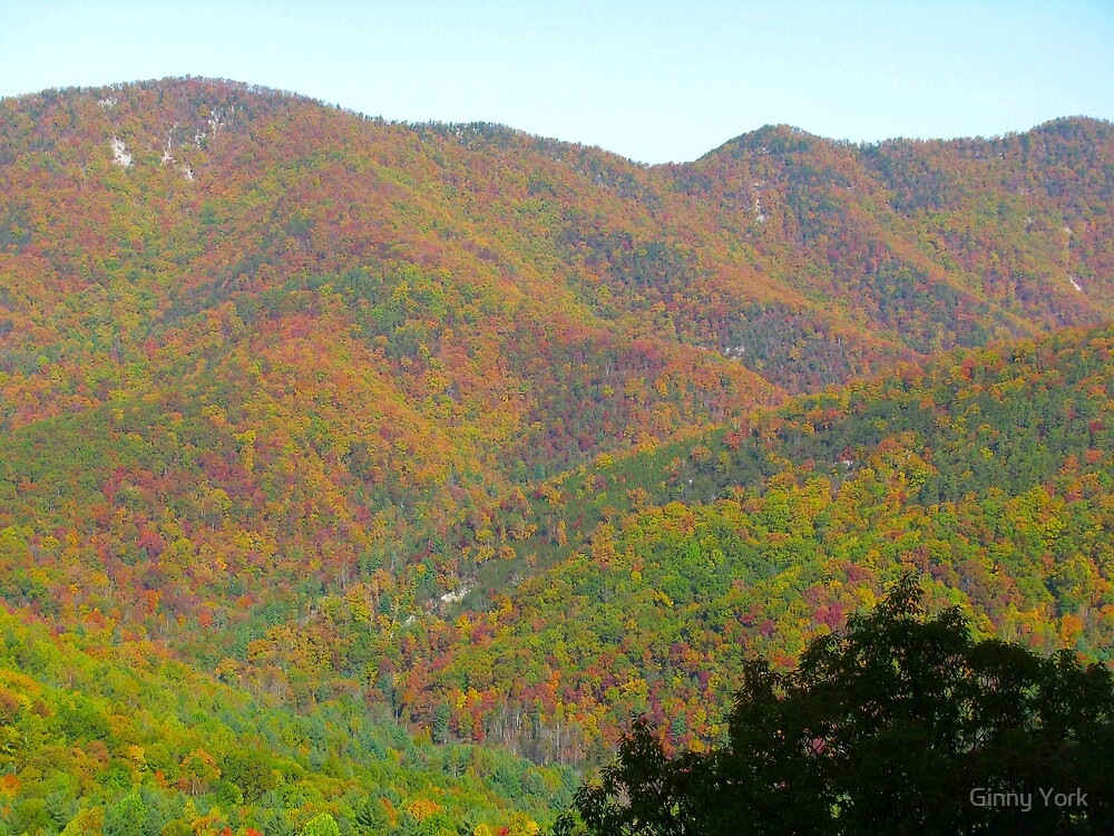 The Blue Ridge Mountains In Fall by Ginny York