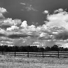 Black & White clouds  by bubbletoes779
