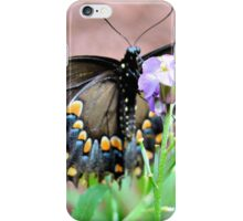 Female Tiger Swallowtail iPhone Case/Skin