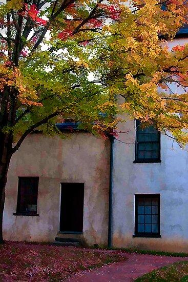 Autumn Solitude by Doug Scott