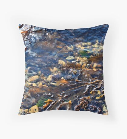 'Another World 2' Throw Pillow