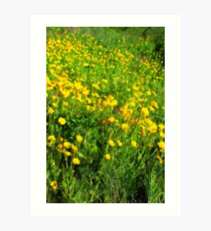 field of flowers impressions  Art Print