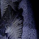 frosty blues by charitygrace