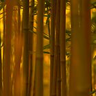 Golden Bamboo II by Jack Grace