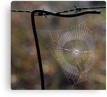 Web. Canvas Print