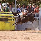 Fun at the rodeo. by trevorb