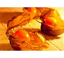 Fruit in a Basket: Physalis Fruit Photographic Print