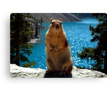 King Of The World Canvas Print