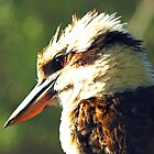 Kookaburra King by bygeorge