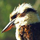 Kookaburra King by bygeorge