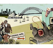 Taronga Park Maternity Ward by Tanya Cooper