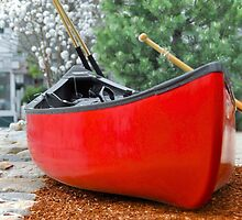 Canoe parking space..... by Poete100