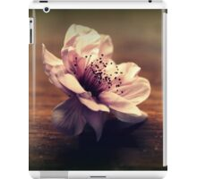 Cherry Blossom On A Table Top iPad Case/Skin