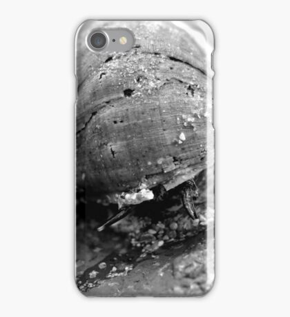 Sea snail garden iPhone Case/Skin