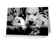 ~Spotted Dreams~ Greeting Card