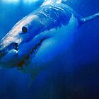 GREAT WHITE SHARK by Chuck Wickham