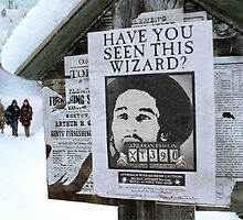 THE WIZARD MARLEY by KEITH  R. WILLIAMS
