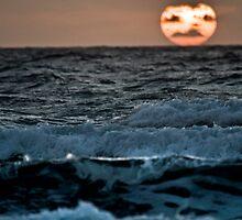 Siren Song by PGornell