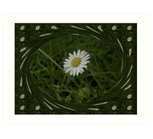Surrounded by daises Art Print