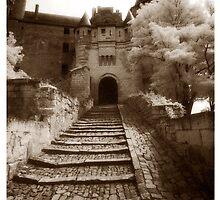Chinon Castle by ragman