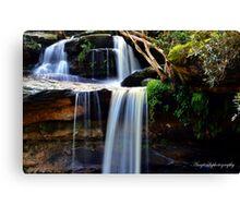 North Narrabeen Waterfalls Canvas Print