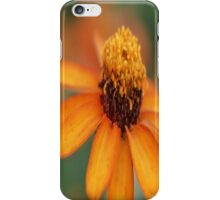 Bright Day iPhone Case/Skin