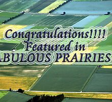 Featured Banner - Fabulous Prairies by Kasia-D