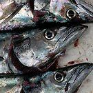 Fish Market 2 by kimwild