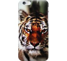 Tiger Painting iPhone Case/Skin