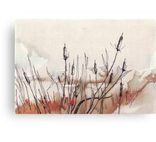 In the Bulrushes Canvas Print