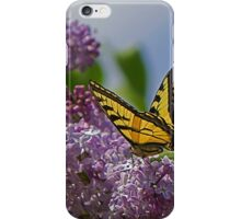 Male Tiger Swallowtail Butterfly iPhone Case/Skin