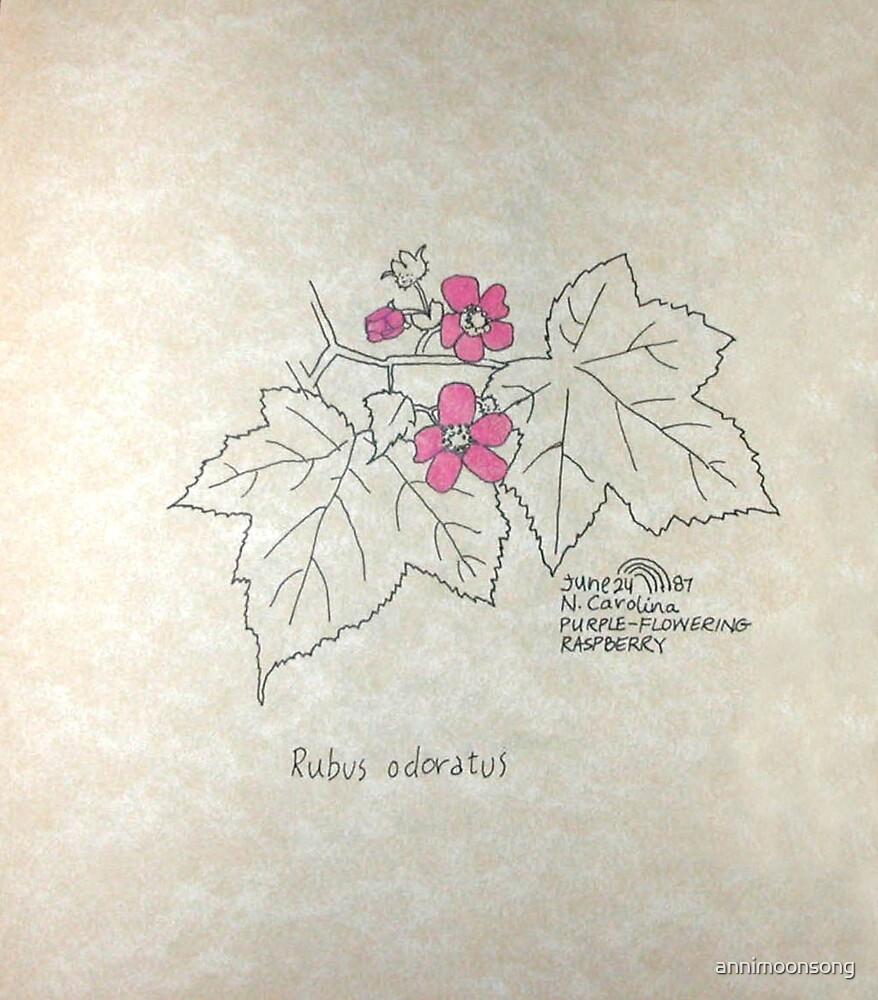 Purple-flowering Raspberry by annimoonsong