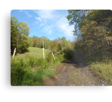 Path to the Swimming Hole Metal Print