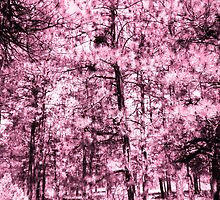 Pink Forest by ashley-dawn