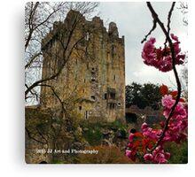 Ireland - Blarney Blossom Canvas Print