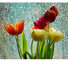 Tulips and Rain Photographic Print