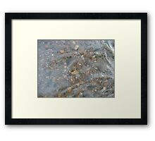 Rocks through Water 3 Framed Print