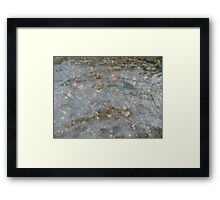 Rocks through Water Framed Print