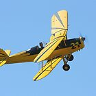 Stampe SV4 by Mike Warman